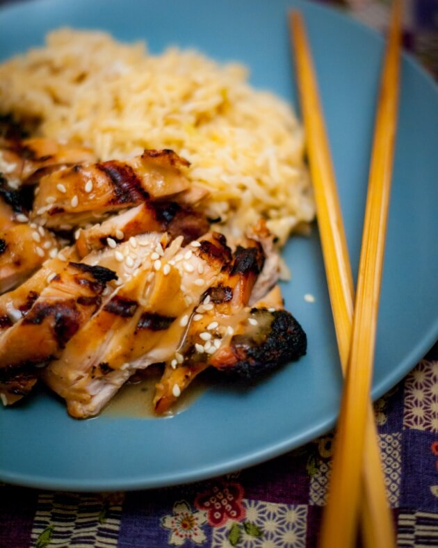 At last! A gluten free and soy free teriyaki chicken recipe! Easy recipe for teriyaki style marinade. Excellent with all proteins from tofu to steak.