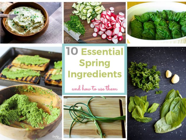Shake off the sluggish feelings of winter with these 10 essential Spring ingredients and mouthwatering weight loss friendly recipes.